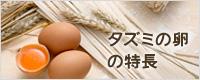 タズミの卵の特長