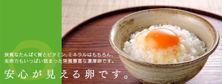 良質なたんぱく質とビタミン、ミネラルはもちろん、生命力もいっぱい詰まった栄養豊富な濃厚卵です。-安心が見える卵です。-